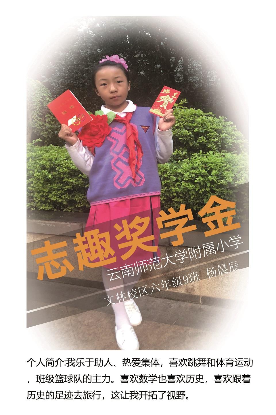 杨晨辰获志趣奖学金